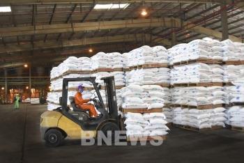 Giá phân bón thế giới tăng cao: Doanh nghiệp nỗ lực sản xuất cung ứng ra thị trường
