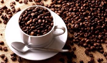Giá cà phê hôm nay ngày 3/8: Đồng loạt giảm
