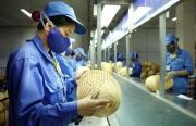 Những điểm sáng của kinh tế Việt Nam