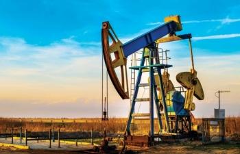 Giá xăng dầu hôm nay 18/11: Quay đầu giảm