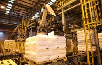 BSR thử nghiệm thành công phân xưởng Hạt nhựa (PP) ở 115% công suất