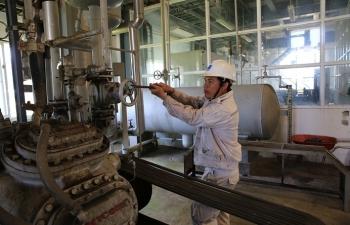Chùm ảnh: Nhịp sống trở lại ở nhà máy nhiên liệu sinh học Dung Quất