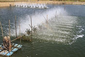 Phòng, chống dịch bệnh nguy hiểm trên thủy sản