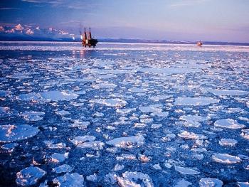 Nga: Chưa hoàn thiện cơ sở pháp lý cho đầu tư dầu khí ở Bắc Cực