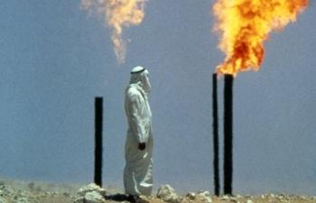 Giá xăng dầu hôm nay 13/11: Giảm mạnh