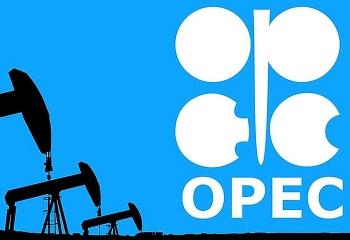 OPEC dự đoán nhu cầu dầu sẽ tiếp tục suy giảm vào năm 2020 và 2021