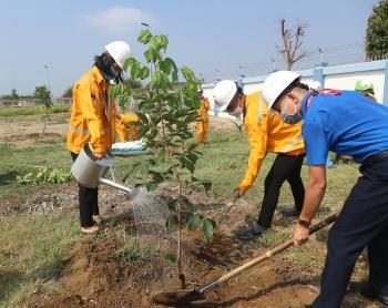 """KĐN phát động đợt 2 chương trình trồng cây """"Chung tay vì màu xanh trên công trình khí"""""""
