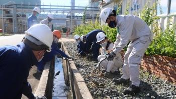 Đoàn Thanh niên Đạm Cà Mau ra quân dọn vệ sinh môi trường khu vực Nhà máy