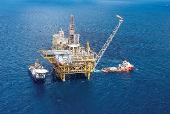 Chứng khoán 30/8: Sắc xanh bao phủ, nhóm cổ phiếu Dầu khí tăng cùng thị trường