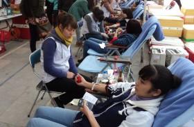 Sinh viên tích cực với phong trào thiện nguyện dịp Tết