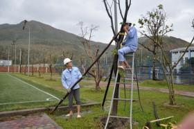 Nhiệt điện Vũng Áng 1 vẫn an toàn trong bão Nari