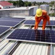 30 nhà đầu tư đang chờ rót vốn vào dự án năng lượng tái tạo tại Cà Mau