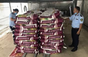 Bán 25 tấn phân bón không hợp chuẩn, hộ kinh doanh bị phạt gần 400 triệu đồng