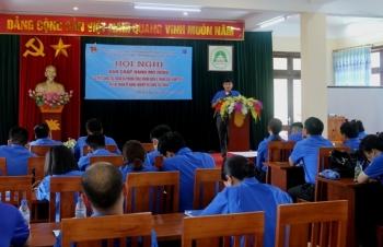 Đoàn Thanh niên Công ty Mẹ - PVN tổ chức Hội nghị sơ kết công tác 6 tháng đầu năm