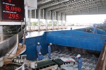 Nhà máy Đạm Cà Mau về đích năm 2015 trước kế hoạch