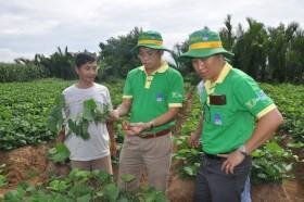 PVFCCo ngày càng gần gũi, thân thiết với bà con nông dân