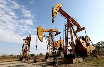 Giá xăng dầu hôm nay 8/1: Giữ đà tăng mạnh, lập đỉnh 12 tháng