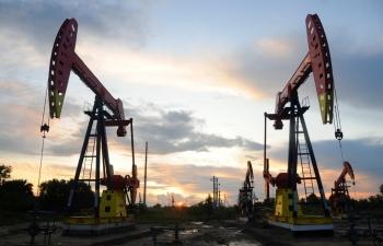 Giá xăng dầu hôm nay 23/7 quay đầu giảm