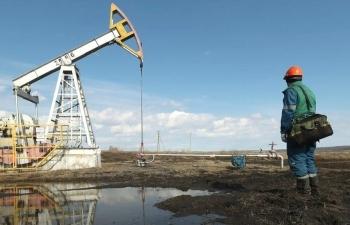 Giá xăng dầu hôm nay 20/11: Chịu áp lực, dầu Brent giữ ngưỡng 44 USD