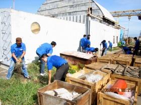 Tuổi trẻ Vietsovpetro tình nguyện vì môi trường