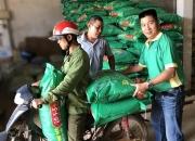 """""""Dinh dưỡng NPK Phú Mỹ"""" cho cây trồng trong mùa khô"""