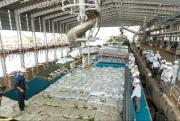 Phân bón Cà Mau: Đẩy mạnh sản xuất, đảm bảo nguồn cung vụ Hè Thu 2021