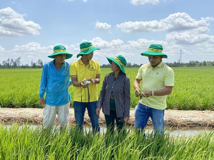 Hành trình 10 năm Phân bón Cà Mau: Bạn của nhà nông, bạn của cánh đồng!