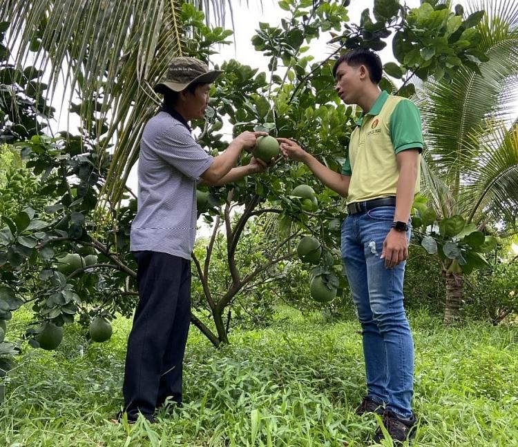Phân bón Cà Mau đạt Giải Vàng Chất lượng Quốc gia: Phần thưởng cho những nỗ lực bền bỉ
