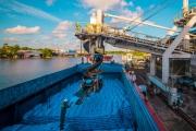 PVCFC: Điều tiết hài hòa tiêu thụ nội địa và xuất khẩu