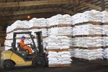 Năm 2019, PVFCCo cung ứng gần 1 triệu tấn phân bón và hóa chất